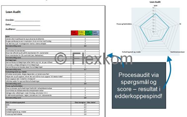 Lean Audit – Lean Evaluering