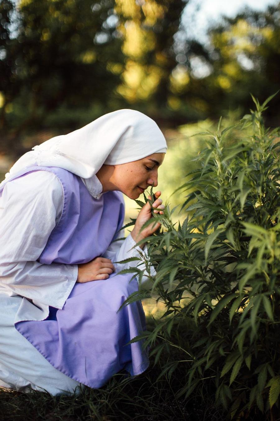 monjas marihuana porros california estados unidos cannabis