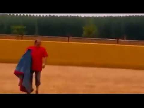 """ثور يهزم مصارعه بتقنية """"عبقرية""""! (فيديو)"""
