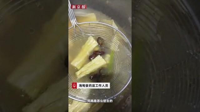 فيديو مروع.. صراصير في وجبة مطعم!