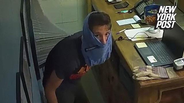 فيديو طريف.. لص غبي يخفي وجهه في ملابسه الداخلية