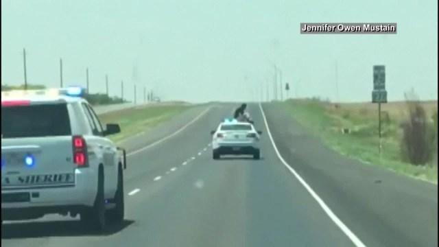 فيديو…في محاولة يائسة سجين يهرب من سيارة الشرطة أثناء سيرها ويجلس فوقها