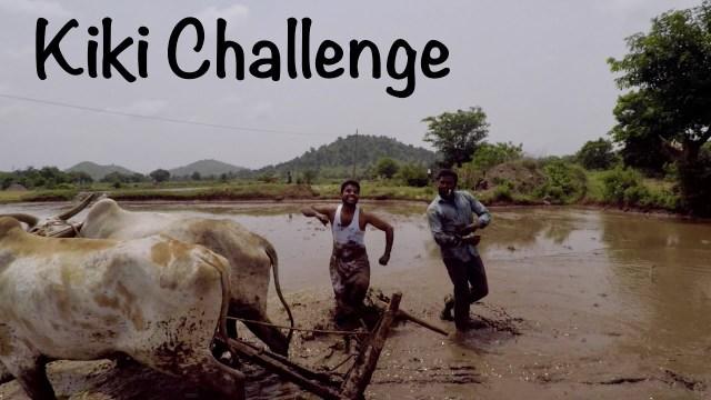 مزارعان يثيران ضجة بأداء تحدي «كيكي» بجانب ثورين