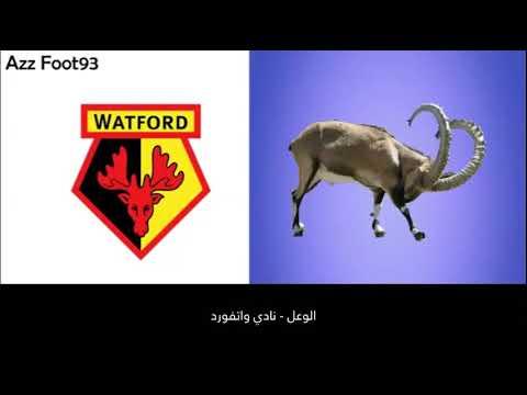 تعرف إلى الحيوانات التي تظهر في شعارات أشهر نوادي كرة القدم