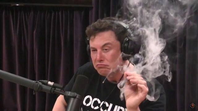 إيلون ماسك يدخن الحشيش خلال لقاء على الإنترنت