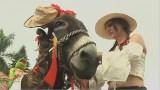مهرجان الحمير.. قبعات وشعر مستعار وجوارب ملونة