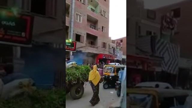 """مصر.. """"مش أول مرة"""".. مهندس بترول يرمي النقود على المارة"""