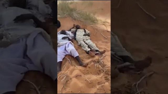 سعودي ينقذ سودانيين تائهين في صحراء حائل