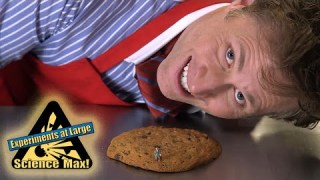 Science Max|TIDES|Science For Kids