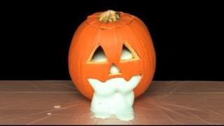 Oozing Pumpkin – Sick Science! #060