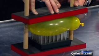 Bed of Nails – Cool Science Experiment