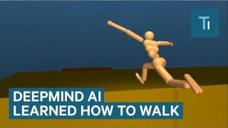 Google's DeepMind AI Just Taught Itself To Walk