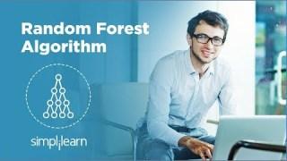 Random Forest Algorithm – Random Forest Explained | Random Forest in Machine Learning | Simplilearn