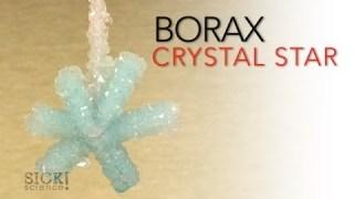 Borax Crystal Star – Sick Science! #066