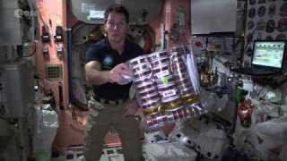 Thomas Pesquet?s space food