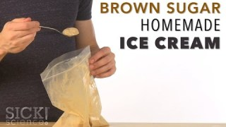 Brown Sugar Homemade Ice Cream – Sick Science! #217