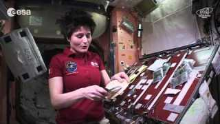 Cooking in space: whole red rice and turmeric chicken