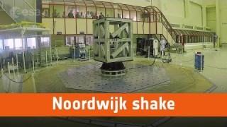 Noordwijk shake