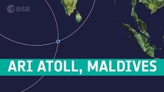 Earth from Space: Ari Atoll, Maldives