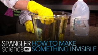 How To Make Something Invisible – Cool Science Experiment