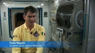 Counting down for ESA's MagISStra mission