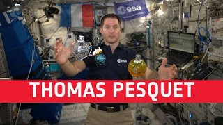 Thomas Pesquet: Biography and training
