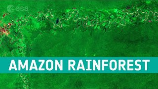 Earth from Space: Amazon rainforest, Brazil