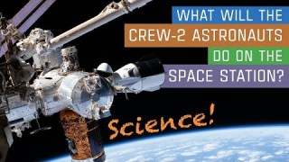 What Will the Crew-2 Astronauts Do on the Space Station? Science!