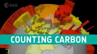Counting carbon