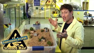 Science Max | MAGNUS EFFECT| FUN SCIENCE