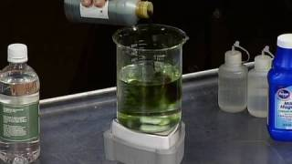 Milk of Magnesia – Cool Science Experiment