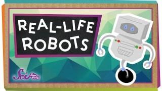 Real-Life Robots