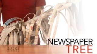 Newspaper Tree – Sick Science! #068