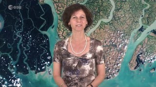 Earth from Space: Sundarbans web