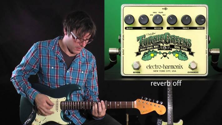 Gear: Electro-Harmonix Turnip Greens