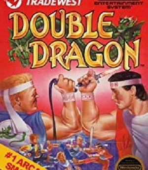Double Dragon facts