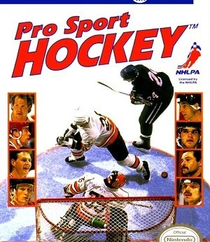 Pro Sport Hockey facts