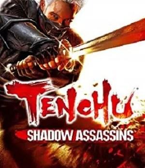 Tenchu Shadow Assassins facts