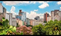 Sao Paulo Vacation Travel Guide | Expedia