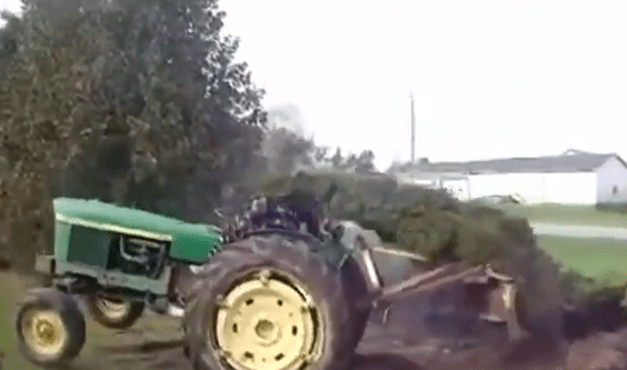 Tree Bitch Slaps Tractor Driver