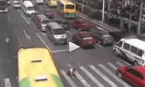 Little Kid Hit By a Bus While Crossing the Street