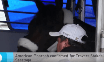 American Pharoah Confirmed for Travers Stakes at Saratoga