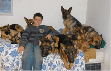 Augusto Deoliveira is the Dog Whisperer