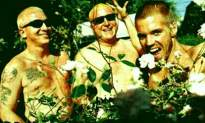 Everything You Ever Wanted to Know About Sublime