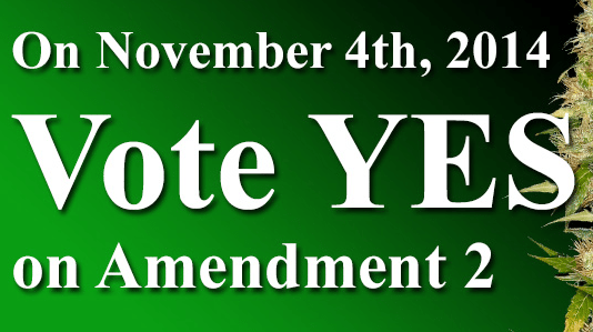 Stoners, Please Rise Off Your Couches For One Day and Go Fucking Vote!!!