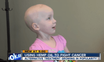 Is CBD Oil The Next Cure For Helping People
