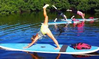 Pick the best paddle board accessories for fishing, yoga