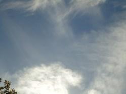 2013.10.31 - PSEKASMOI IOANNINA_15