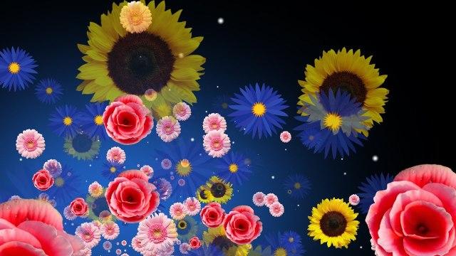 ВИДЕОПЕРЕХОДЫ Art color transitions Full HD