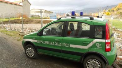 Photo of Campania – Corpo Forestale: M5S contro il taglio dei fondi